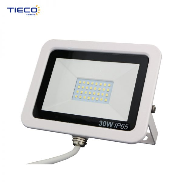 LED Flood Light-55