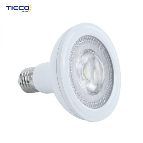 led spotlight-PAR30-3