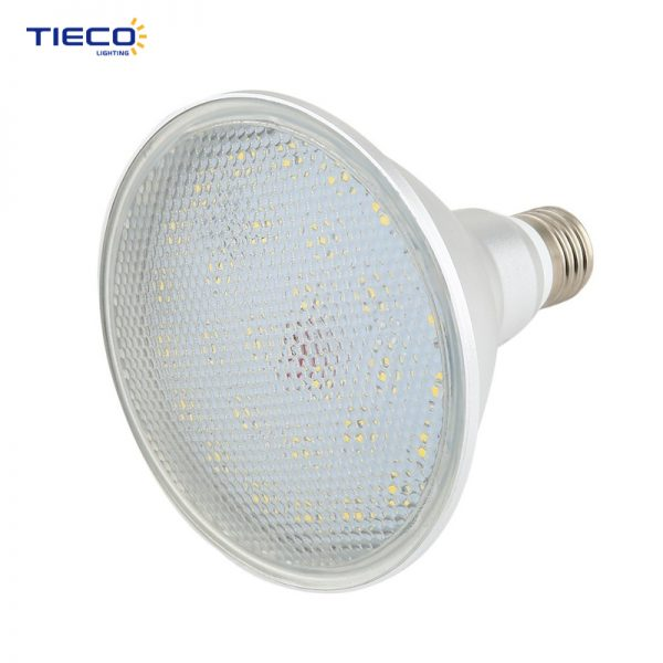 led spotlight-PAR38-12